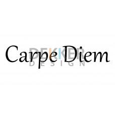 Carpe Diem 5 X 30 CM